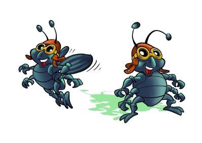 insetto coleottero_1